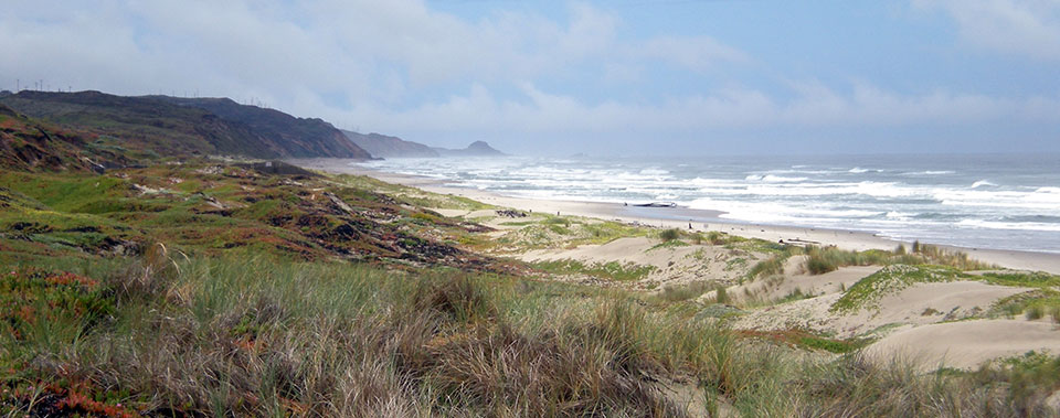 Ocean Beach, Surf Beach, and Jalama Beach are just a few miles outside of Lompoc.