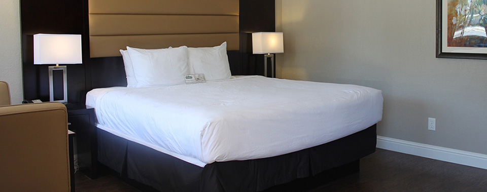 Newly remodeled hotel rooms and suites designed for ultimate comfort.